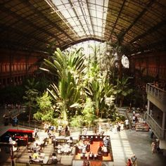 Estacion de Atocha, Madrid