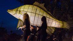Fish sculpture lantern at Forbes art festival