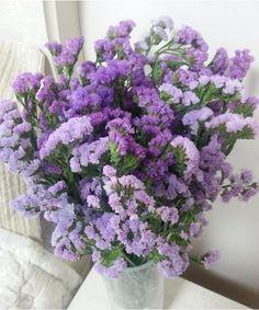 Violet Aesthetic, Lavender Aesthetic, Aesthetic Colors, Flower Aesthetic, Pastel Purple, Purple Rain, Shades Of Purple, Periwinkle, Purple Flowers