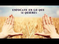ENFOCA TU MENTE Y CREARÁS TU MUNDO - YouTube