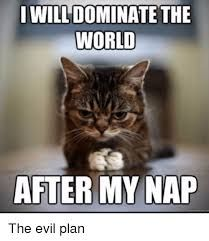 21 Animals Who Really Need Their Nap Right Now ( Memes) Funny Animal Pictures Of The Day – 21 Pics American Bobtail Cat Breeds Funny Animal Memes Of The Day 23 Pics 19 Cat Memes That will Have You Giggling For Days Funny Animal Pictures Of The. Funny Animal Quotes, Cute Funny Animals, Funny Cute, Cute Cats, Funniest Animals, Cat Fun, Animal Humor, Cat Sayings, Funny Cat Memes