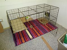 Pandora's new NIC cage! - BinkyBunny.com - House Rabbit Information Forum - BinkyBunny.com - BINKYBUNNY FORUMS - HABITATS AND TOYS