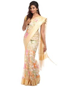 Net Jute Tissue Saree. Golden color. Body is net tissue, allover multicolor designs with border. Tissue border and pallu. Blouse is tissue net with saree border.