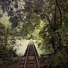Stray Off the Beaten Path - Berlin abandoned theme park - Spreepark