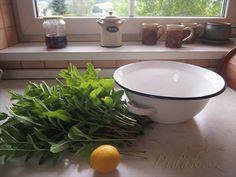 Obrázek z Recept - Mátový sirup - nevařený