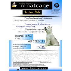 Junior Fish