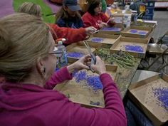 Rose Parade - Tournament of Roses Parade Float - volunteering to decorate floats at the Rose Parade - HGTV-float-3-cutting