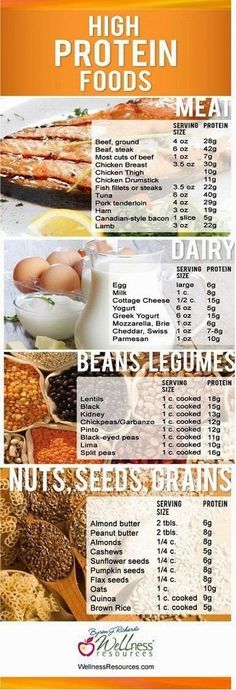 Time to Get Fit!: High Protein Foods
