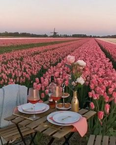 Nature Aesthetic, Travel Aesthetic, Spring Aesthetic, Vacation Trips, Dream Vacations, Beautiful Places To Travel, Romantic Dinners, Travel Destinations, Travel Tours
