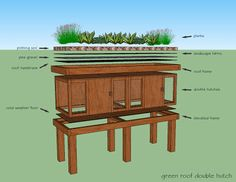 Rabbit Hutch with Green Roof, Raised Frame and His/Her Hutches