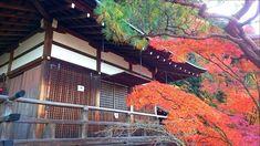 """– Mika no sekai - Japan: """"Eikando, Kyoto #japan #kyoto #eikando #autumn #Mikanosekai #Instablogger #インスタグラマー #traveldiary…"""""""