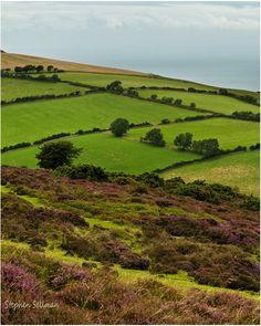 Exmoor National park, Devon. Exmoor blanket by ~sassaputzin on deviantART