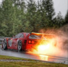 Yep, the most interesting cars in the world. Ferrari F40, My Dream Car, Dream Cars, Automobile, Big Ride, Top Cars, Car In The World, Modified Cars, Exotic Cars