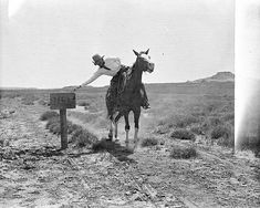 A cowboy from the LS outfit mailing a letter. LS Ranch, Texas., 1907