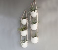 Ceramic hangers by Farrah Sit .. plant herbs in kitchen for fresh herbs
