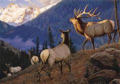 """""""Packing In"""" -mansanarez Wildlife Art by Tom Mansanarez"""