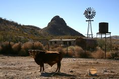 Abandoned ranch house and Black Hill, Billy the Kid's hideout
