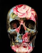 Art by Gerrard King - Skulls