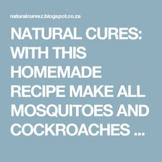 NATURAL CURES: WITH THIS HOMEMADE RECIPE MAKE ALL MOSQUITOES AND COCKROACHES FALL DEAD IMMEDIATELY