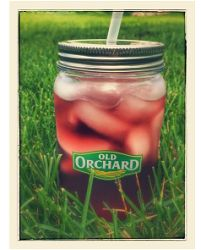 FREE Mason Jar Tumbler from Old Orchard! Head over and Upload a photo of you or your family enjoying your favorite flavor of Old Orchard juice and y Mason Jar Tumbler, Mason Jars, Diy Angels, Free Samples By Mail, Old Orchard, Get Free Stuff, Freemason, Sunny Days, Photo Upload