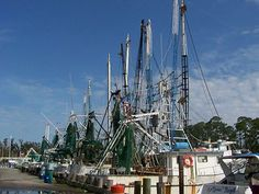 Harbor, Ocean Springs, Mississippi. We've bought shrimp there. Fresh from the boat!