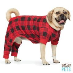 Martha Stewart Pets™ Pajamas - I keep on thinking how cold Charlie must be on some of these nights lately! I have a nice warm down duvet to sleep under, but he doesn't. Plus how perfect are these for Christmas?