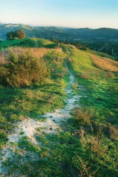 Guide to 12 East Bay Hikes