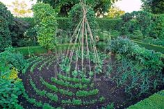 Pretty veggie gardens