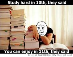 Image result for study hard quotes funny