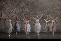 Artists of The Australian Ballet in Peter Wright's The Nutcracker. Peter Wright, Australian Ballet, Ballet Companies, The Dreamers, Ballerina, Stage, Artists, Pure Products, Dance