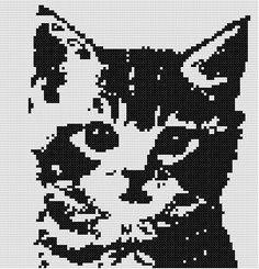 Kitten Counted Cross Stitch Pattern by WooHooCrossStitch on Etsy, $9.00