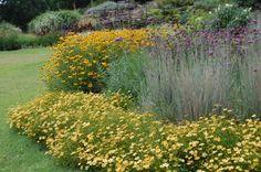 cheekwood gardens in Nashville --- perennials in mass