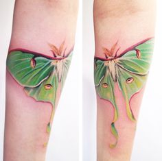Luna moth - beautiful!  Artist Amanda Wachob  #tattoo #body_art I would love this on my thigh, on my ribs/side, or under my sternum