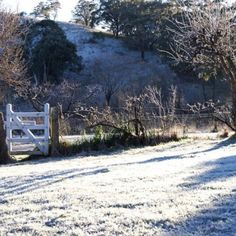 Morning frost, Central West NSW Silver Creek, Windmill, Frost, Australia, Spaces, Country, Live, Outdoor, Outdoors