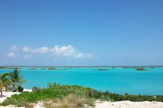 I have visited a majority of the islands in the Caribbean and have found Turks and Caicos is one of the most beautiful islands in the Caribbean.