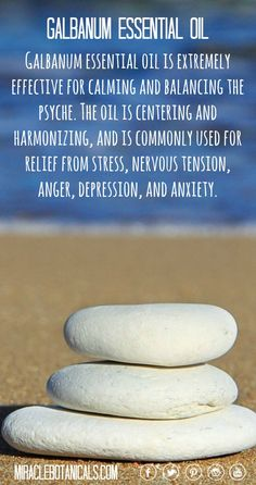 Galbanum essential oil is extremely effective for calming and balancing the…