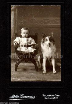 AntiqueCDVPhoto Boy with Lassy Collie Dog Portrait Photograph Cabinet Card