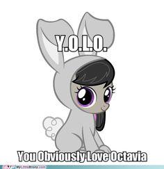One of my favorite ponies :3 1 Derpy 2 Dr.whooves 3 Vinyl scratch 4 Octavia 5 Shining Armor 6 Carrot Top 7 Lyra Heartstrings 8 Bon Bon 9 Luna 10 Neon