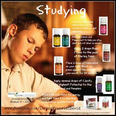 Young Living Essential Oils: Classroom School Student Study Teacher