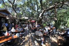 Tree house restaurant- The Crab Shack. Tybee Island, GA - great food, awesome atmosphere :)