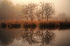 Photograph Misty reflection by Ton   lع Jeune on 500px