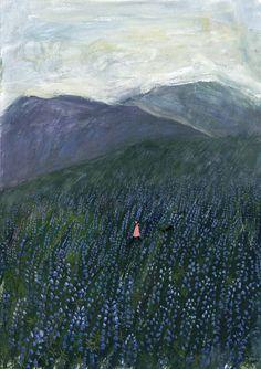 beautiful field of lupin.... Iceland | 卤猫