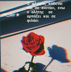Greek Quotes, Netflix, Love, Amor