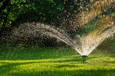 Please visit our website and check out our collection of helpful blog articles. Most are aimed at homeowners and all contain great Florida-specific information. http://www.ogmlandscape.com/florida-grasses-fall-watering/ #ogmlandscape #landscapedesign #southflorida #portstlucie #orlando #floridalife #tampa #stpetersburg #sarasota #irrigation #turfgrass