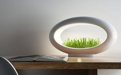 Modern Desktop Garden  Grasslamp is a miniature garden that could also be a desktop lamp bringing a nature touch in a room. The object enables to grow grass with water and the LED light but without soil. An oval design that gives a futuristic aspect to this atypical lamp. The project is currently on a crowdfunding campaign on Kickstarter.       #xemtvhay