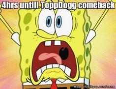 topp-dogg
