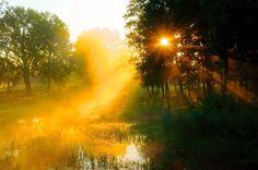 Free Image on Pixabay - Forest, Sunset, Pond, Lake, Masuria