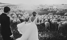 50 Award-Winning Wedding Photos That Will Blow You Away