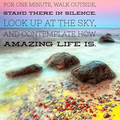 """For one minute, walk outside, stand there in silence, look up at the sky, and contemplate how amazing life is."""
