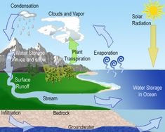 Waterkringloop | Lesmateriaal | Pinterest | Water Cycle and Water